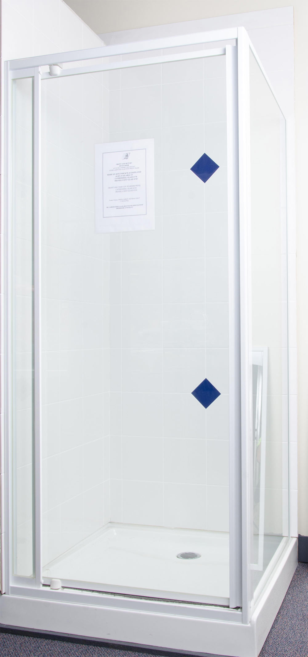 Fully Framed Pivot Door Speedy Shower Screens